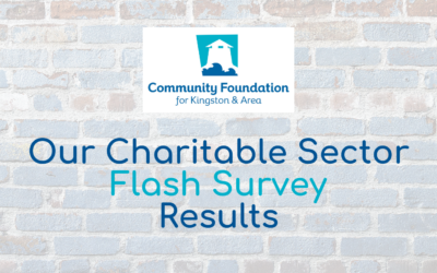 Our Charitable Sector Flash Survey Results